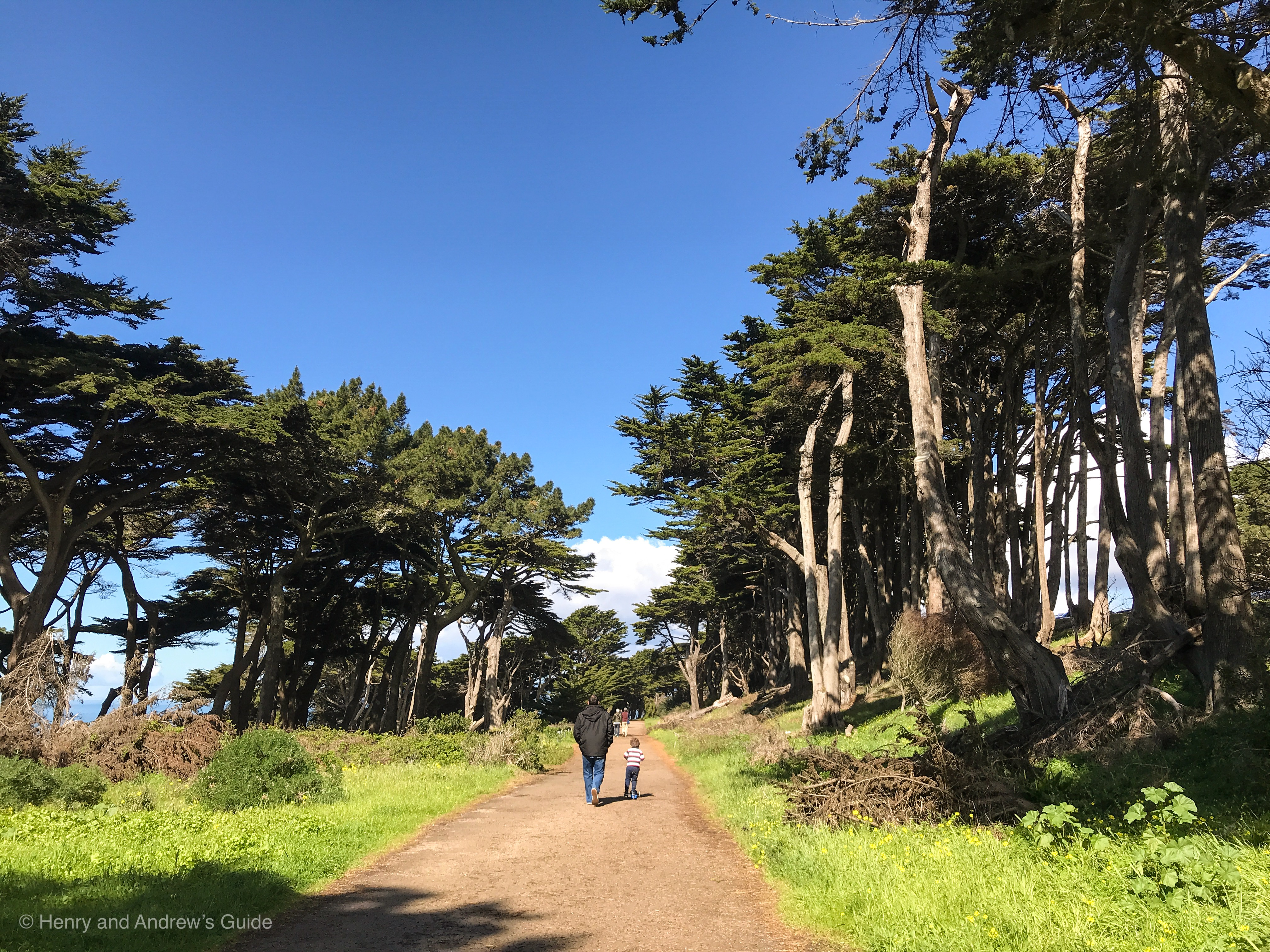 Lands End San Francisco with Kids | San Francisco with Kids | Kid Friendly Hikes in San Francisco | Henry and Andrew's Guide (www.henryandandrewsguide.com)